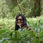 Raminder-Kaur_tb
